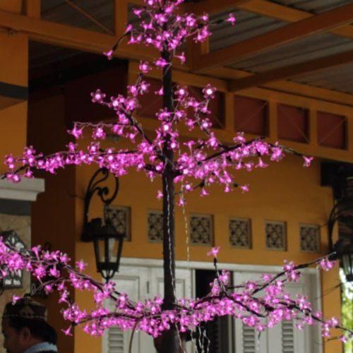 proyek lampu pohon unik sampang madura